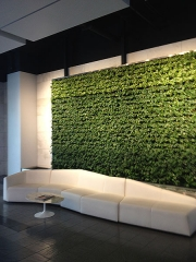living-wall-gallery5-livenation-hollywood
