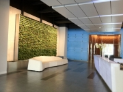 living-wall-gallery6-livenation-hollywood