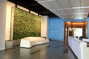 Living-Wall-LiveNation-Hollywood-3x2